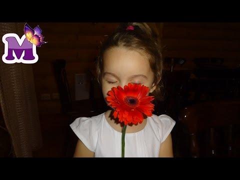 Мария танцует Танцы на Новогодней Дискотеке БАЗА ОТДЫХА видео для детей