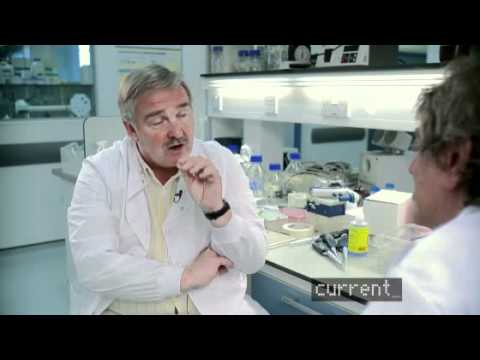 Howard Marks Interviews David Nutt On The Dangers of Drugs &amp; Drug Policy Reform (November, 2010)