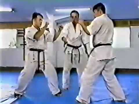 Hiroshigi. The best of kyokushinkai kumite 3 Image 1