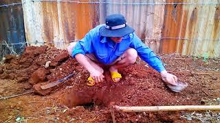 Đi bắt mối chúa bằng siêu xe 😂 (Catching termite queen by motorbike)