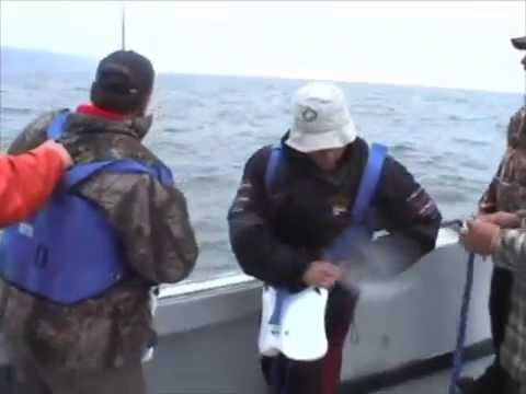 Shark Fishing in the Bay of Fundy 5