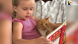 Little Girl Shows Her Cat The Sounds That Animals Make - BAILEY | The Dodo