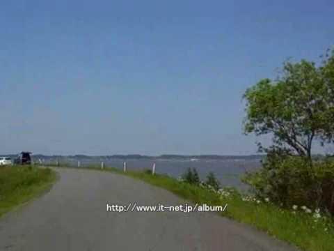 多摩川河川敷をサイクリング