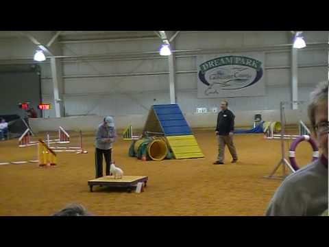 Abbi Emmi & Taylor Jumpers & Standard 2-20 Video