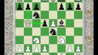 Chess Opening: Vienna Game 3.f4 (Thoughts)