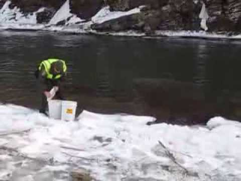 Picture rocks pennsylvania for Pa fish stocking