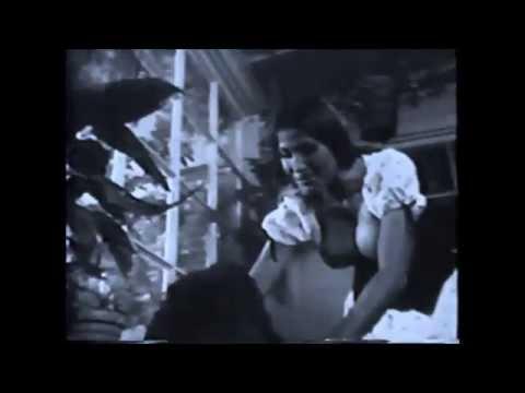 14 - Johnny B. Goode - The Love's White Rabbits - Khantharana Valley Experience