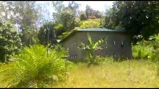 Suara Panggil Burung Walet Yang Dasyat 10/08/2013/758