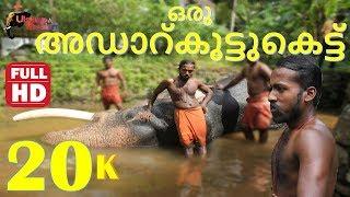 Kerala elephant : Oru adaar Kootukettu: ഒരു അഡാറ്കൂട്ടുകെട്ട് നെല്ല്യക്കാട്ടു മഹാദേവനും അനൂപും