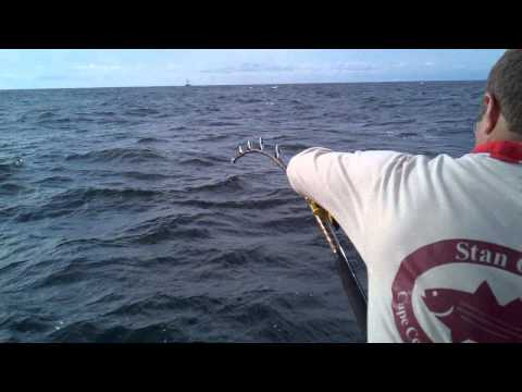 Giant Tuna Fishing at Stellwagen Bank off Cape Cod