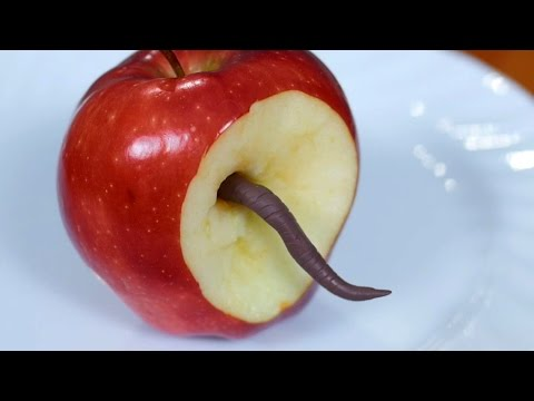 WORM IN APPLE!