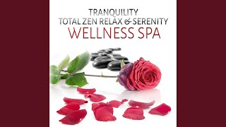 Best Of Spa Music Simple Serenity