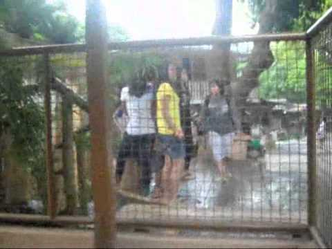 osang SWIMMING in WATER WONDER RESORT @ ANTIPOLO CITY