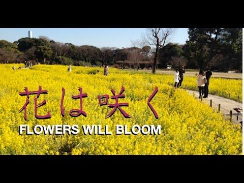 花は咲く Flowers Will Bloom -- Nobuyuki Mizuoka video