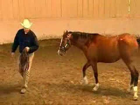 Doma Racional-Monty Roberts
