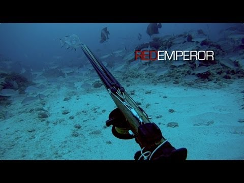 Spearfishing - Red Emperor