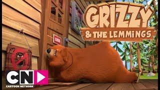 Ayılar Giremez   Grizzy ve Lemmingler   Boomerang Kuşağı