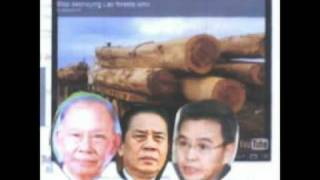 Comment on Protest in Laos 12-16-11.mpg