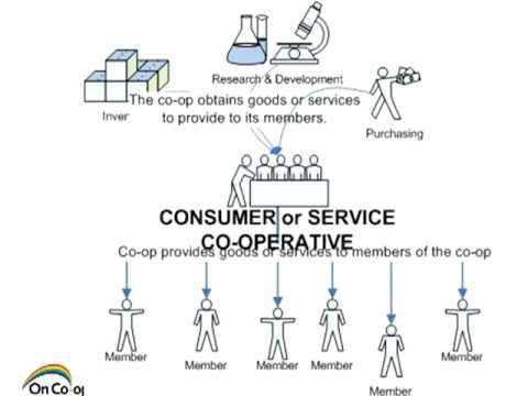 Introduction to the Co-operative Model Part 2