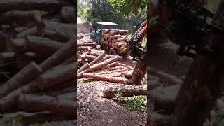 Máy xúc kẹp gỗ lên xe