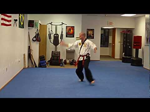 Tang Soo Do - Rohai.AVI Image 1