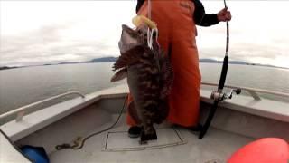 Taco Surf Fishing Team - Coffman Cove Alaska Promo Video