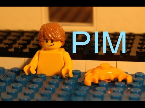 Lego Pim In Swimming pool