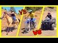 🏁 Dirt Bike vs Horse vs ATV Time Trial Race! 🏇 🐴
