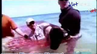 VietDaiCa.Net - [ Clip Sock - Kinh Dị ]  Chơi  ngu đù với tử thần