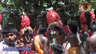 jaffna Veerakkeeni Kanthan kavadi HD 2 video  2014 Madduvil South | Chavakachcheri | Jaffna .