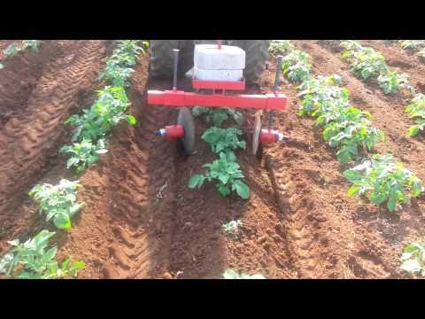 Rincalzatore per patate