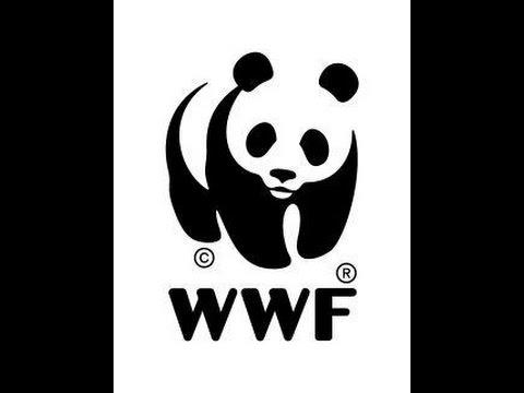 WWF Minecraft Pixel art