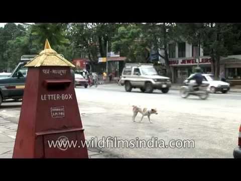 Nepal Post Letter-box on Kathmandu street