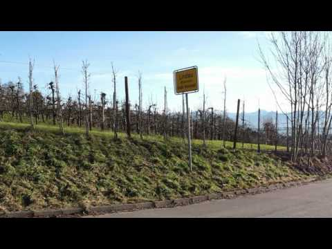 Longboard short Episodes: EP4 lake of constance