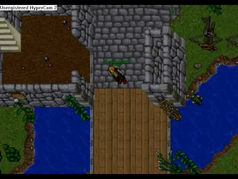 Elf Bot NG Tibia 8.54 Cracked!