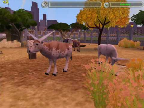 My zoo tycoon 2 downloads