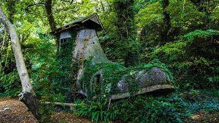 The Secret Shoe House of the Undercliff - Isle of Wight