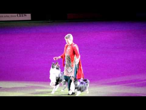Mary Ray at CRUFTS 2011