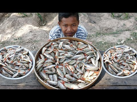 Small Fish Stew Recipe / Yummy Cooking Tiny Fish With Tomato / Kdeb Cooking