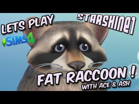 Let's Play Sims 4: Fat Raccoon !