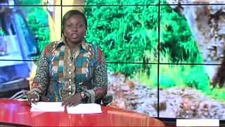 Ghana Primetime News @ 8 on Joy (24-5-13)