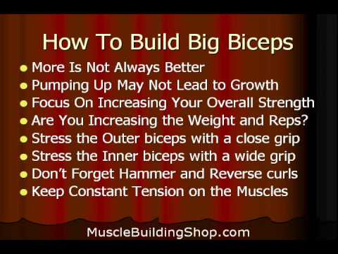 how to build your biceps fast at home