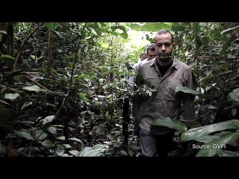 Global Viral Forecasting Founder Nathan Wolfe Interview⎢Virus Hunters⎢TakePart TV