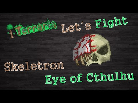 Terraria : ' Skeletron + Eye of Cthulhu ' [Fight]