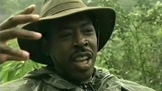 Congo Journey into the Unknown (TV Special, 1995)