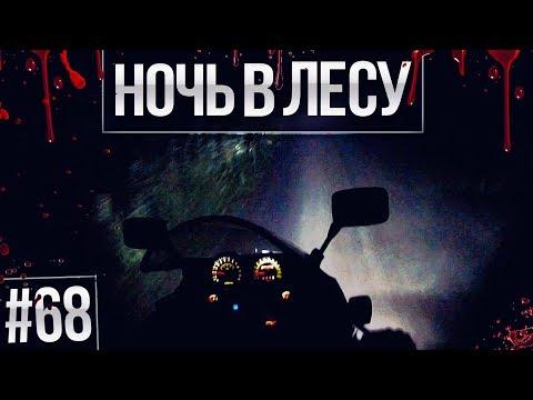 ПОКАТУШКИ #68 - НОЧЬ В ЛЕСУ! ЗАГЛОХ В ТЕМНОТЕ!