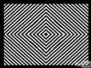 Ilusión Optica y Alucinación
