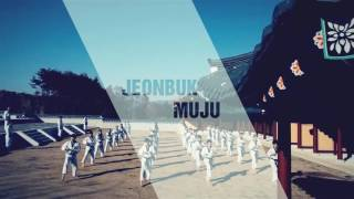 Preview_2017 World Taekwondo Championships in Muju, Korea on June 24-30