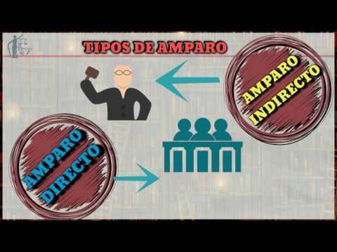 TIPOS DE AMPARO