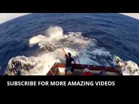 Funny Videos ** Funny Videos ** [Funny Videos]